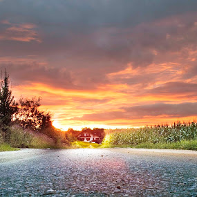 The golden house by Ioan G Hiliuta - Landscapes Sunsets & Sunrises ( end of the road, sunset, road, house, stones, corn )