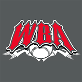 World Baseball Academy