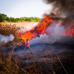 can you see the Dragon ? by Lucian Petrea - People Fine Art ( pwcfire, dragon, people, fire )