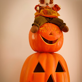 top of the pumkins by Rose Johnson - Public Holidays Halloween ( holiday, orange, fall, pwcpumkins, halloween )