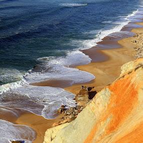 Autumn in beach by Gil Reis - Landscapes Beaches ( sand, beaches, life, bio, nature, colors, sea, ocean )