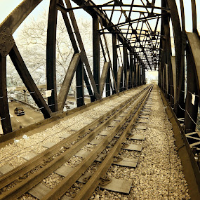 The Malayan Railway by Alit  Apriyana - Buildings & Architecture Bridges & Suspended Structures