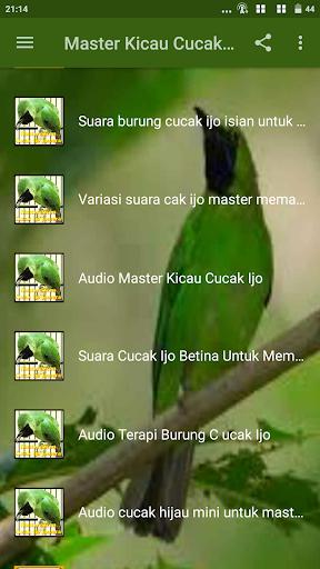 DOWNLOAD Suara Burung Cucak Ijo Mini Gacor Pikat MP3 | HARGA