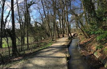 Photo: A lovely walk behind Jonathan's house