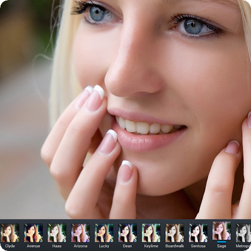 Camera for Perfect365