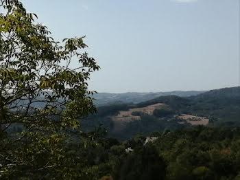 terrain à Saint-Martial-Entraygues (19)