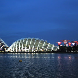 Garden By The Bay by Koh Chip Whye - City,  Street & Park  City Parks (  )
