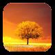 Awesome Land Pro LiveWallpaper v2.6.0