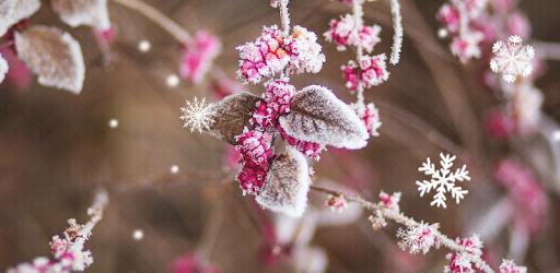 karta lyrön Beautiful Winter Live Wallpaper – Google Play ilovalari karta lyrön