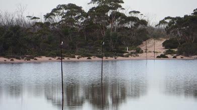 Photo: Old telegraph poles through the salt lake
