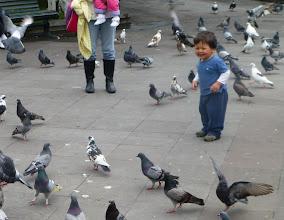 Photo: Boy meeting pigeons