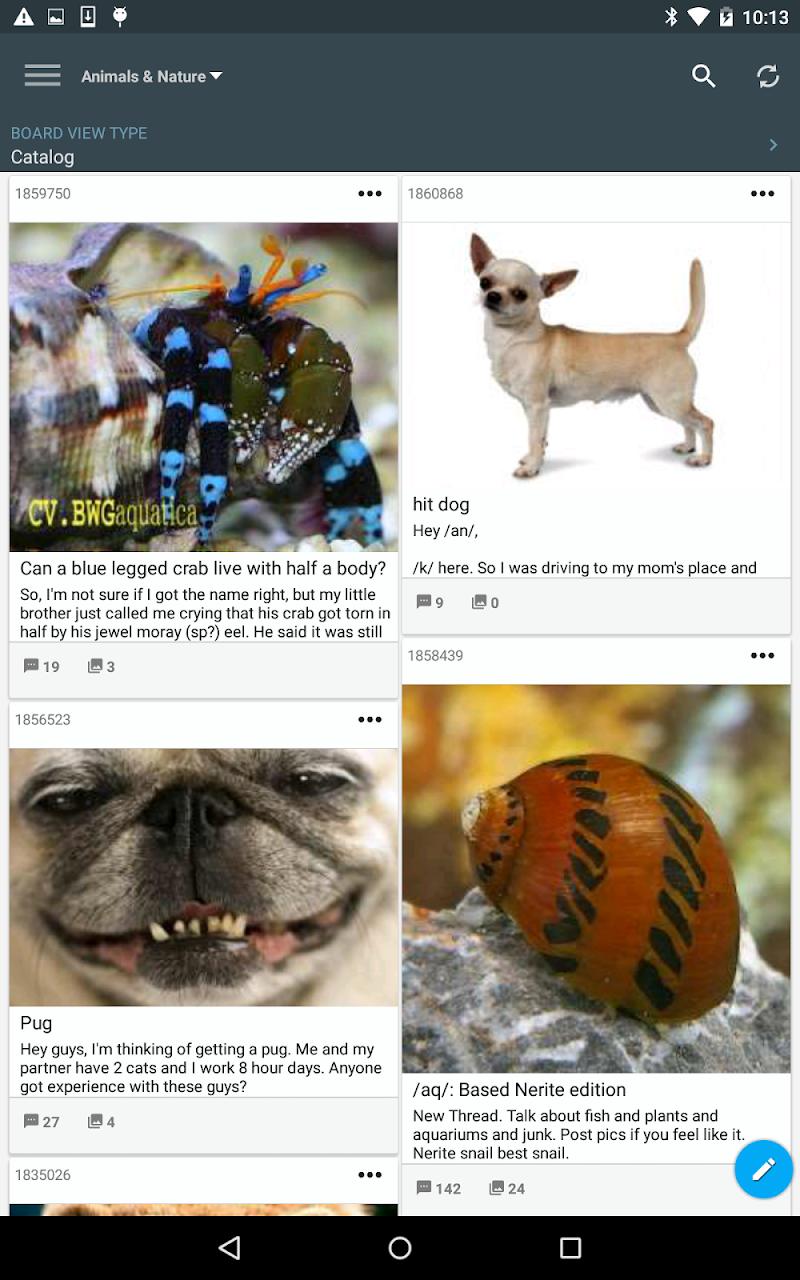 Mimi 4chan Reader (donate) Screenshot 9