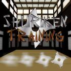 Shuriken Training HD icon