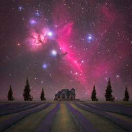 Lavender Night by Andy Taber - Digital Art Places (  )