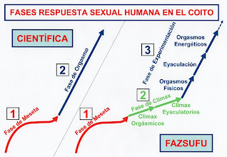 Photo: ESPAÑOL: Método fazsufu - Comparación fases de la respuesta sexual humana en el coito. ENGLISH: Method fazsufu - Comparing phases of the human sexual response in sexual intercourse. CHINO: Fazsufu 方法 - 比較性交在人類性反應階段. ÁRABE: Fazsufu الأسلوب - مقارنة مراحل الاستجابة الجنسية البشرية في الجماع
