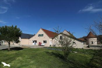 locaux professionels à Saint-Aubin (36)