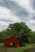 Photo: another angle of the red shed. we've had several storms this week, leaving us with some beautiful clouds.