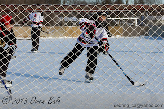 Photo: Through the net