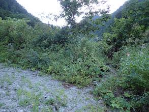 林道終点手前の右手に登山口