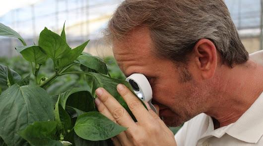 Arranca un proyecto que desarrolla estrategias de producción en agroecosistemas