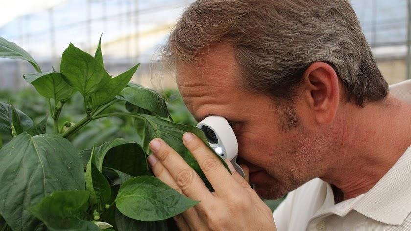 Arranca un proyecto que desarrolla estrategias de producción en agroecosistemas.