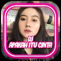 DJ Apakah Itu Cinta Remix  Full Bass offline bonus icon