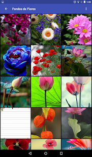 Fondos de Flores Screenshot