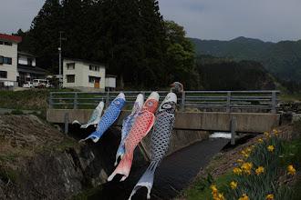 Photo: 佐藤