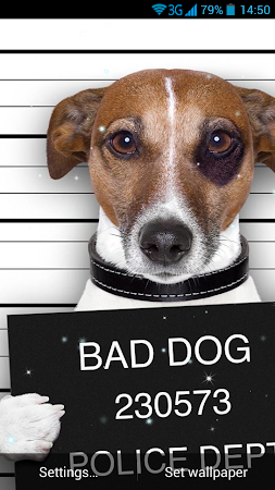 Funny Bad Dogs Live Wallpaper 31 Screenshot 990822