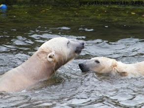 Photo: Und nun ab ins Wasser :-)