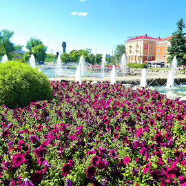 City square with fountains by Svetlana Saenkova - City,  Street & Park  City Parks ( flowers, fountain,  )