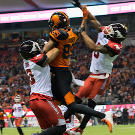 Going High For The Ball by Garry Dosa - Sports & Fitness American and Canadian football ( sports, teams, jumping, players, cfl, black, football, lighting, people, red, orange, white, indoors, stadium )