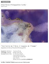 """Photo: Vernissage samedi 16 avril 2016 à partir de 18h30 """"Territoire de l'être/espaces de l'homme"""" Le MUR, l'expression contemporaine de l'art 8 avenue de sens 77250 Ecuelles"""