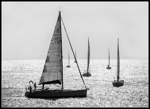 Photo: sailing regatta This photo taken this weekend in Vilanova i la Geltru, a coastal town. I attended a meeting of photographers. my contribution to: #MonochromeMonday curated by +Charles Lupica +Bill Wood +Hans Berendsen +Jerry Johnson  #PlusPhotoExtract by +Jarek Klimek