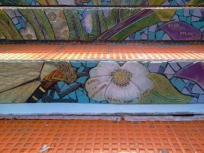 Photo: Detail on the third flight of steps (from top) of the Hidden Garden Steps (16th Avenue, between Kirkham and Lawton streets in San Francisco's Inner Sunset District) installed on October 30, 2013. KZ Tile workers finished installing more than 50 pieces of the 148-step ceramic-tile mosaic designed and created by project artists Aileen Barr and Colette Crutcher. For more information about this volunteer-driven community-based project supported by the San Francisco Parks Alliance, the San Francisco Department of Public Works Street Parks Program, and hundreds of individual donors, please visit our website at http://hiddengardensteps.org.