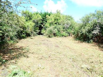 terrain à batir à L'Ile-d'Yeu (85)