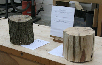 Photo: The Silent Auction has a couple nice ambrosia maple logs donated by Wood ID Guru Ed Karch.