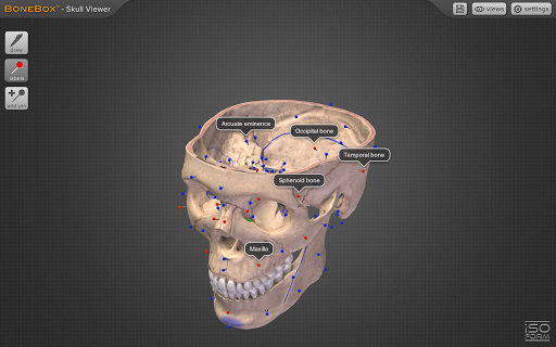 BoneBoxu2122 - Skull Viewer 1.0.0 screenshots 2
