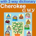 Vocab Fun Cherokee Tsalagi