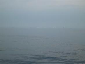 Photo: 沖では「巻き網船」が待機してます。