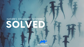 Nature's Strangest Mysteries: Solved thumbnail