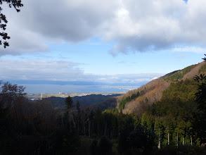 伐採地から琵琶湖を望む