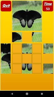 Puzzle My Mind Pro Screenshot