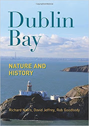 Dublin Bay: Nature and History - David Jeffrey, Richard Nairn, Rob Goodbody