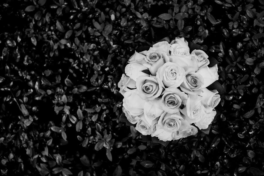 Φωτογράφος γάμων Aleksandr Vachekin (Alaks). Φωτογραφία: 02.06.2017