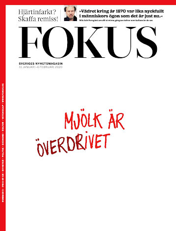 Fokus #5/20