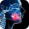 Anatomy of the Mouth icon
