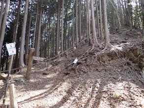 心見茶谷跡(ここから本格的な登り)