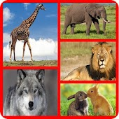 Wild Animals Quiz - For Kids