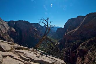 Photo: Zion Angels Landing Hike 277